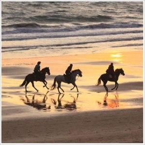 Avalon 3 explorers on horseback