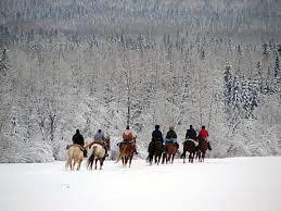 horseback snowy forest