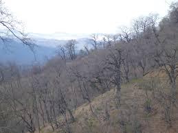 Caspian hills 3