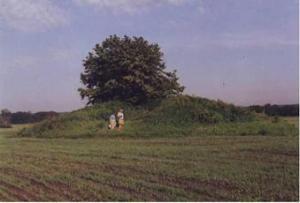 caspian village 1