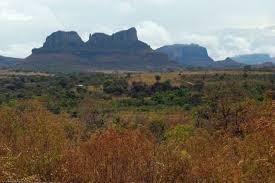 grassland brazil 2