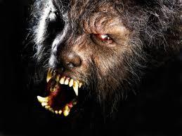 barak werewolf 3