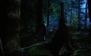 hween forest 8
