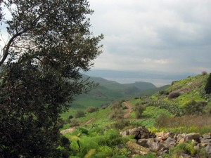 golan heights 1
