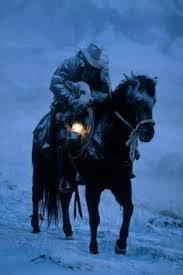 horse night snow