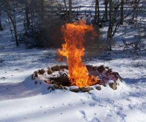 ice fire in woods