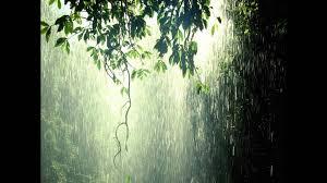 po rain 1