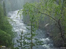 po rain 5