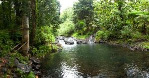 pohnpei 2