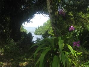 pohnpei 8