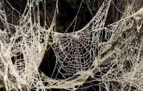 ab-spider-web-4
